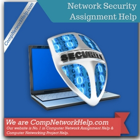Network Security Assignment Help