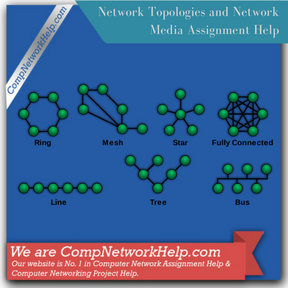 Network Topologies and Network Media Assignment Help