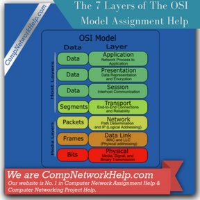 The   Layers of The OSI Model Computer Network Help  Computer